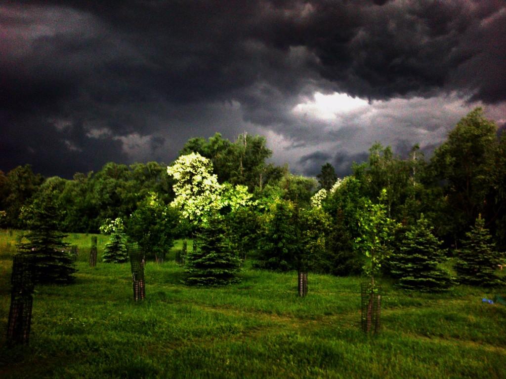 Vihar készülődik