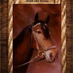 Pej ló