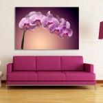 WMPG0379-viragok-bibor-orchidea-szoba